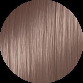 10/26 - Платиновый блондин фиолетово-красный
