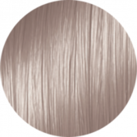 1012 - Пепельно-фиолетовый