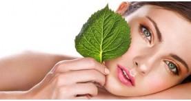 Программа «Антикомедон» для эффективного очищения кожи от Holy Land
