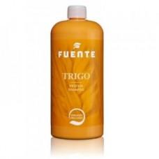 Оздоровительный шампунь глубокой очистки Fuente Nature Wellness Shampoo