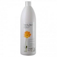 Шампунь абрикосовый для сухих волос Farmavita Back Bar Shampoo